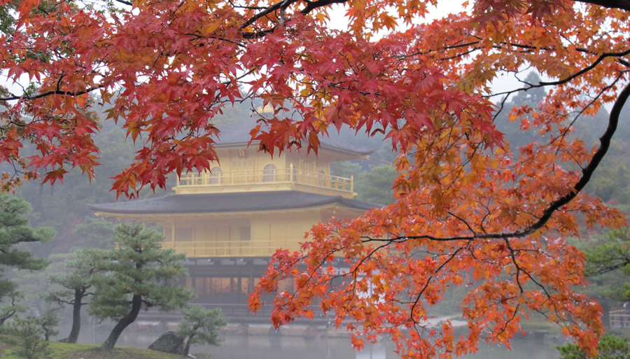 Autumn colors in Kyoto